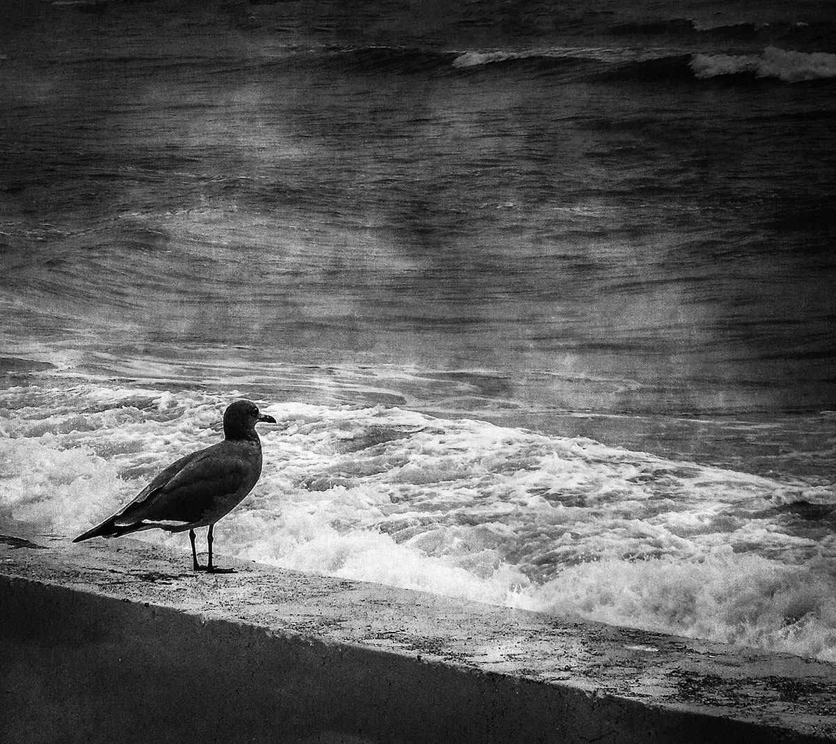 Photo black & white from Natalia Ciric for the song See the Sea from Samuel Christen