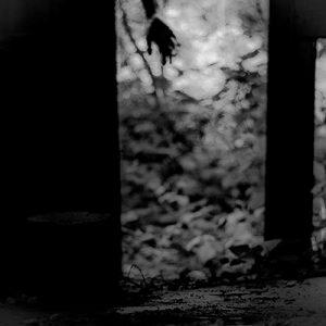 Black and white photo, door, hand